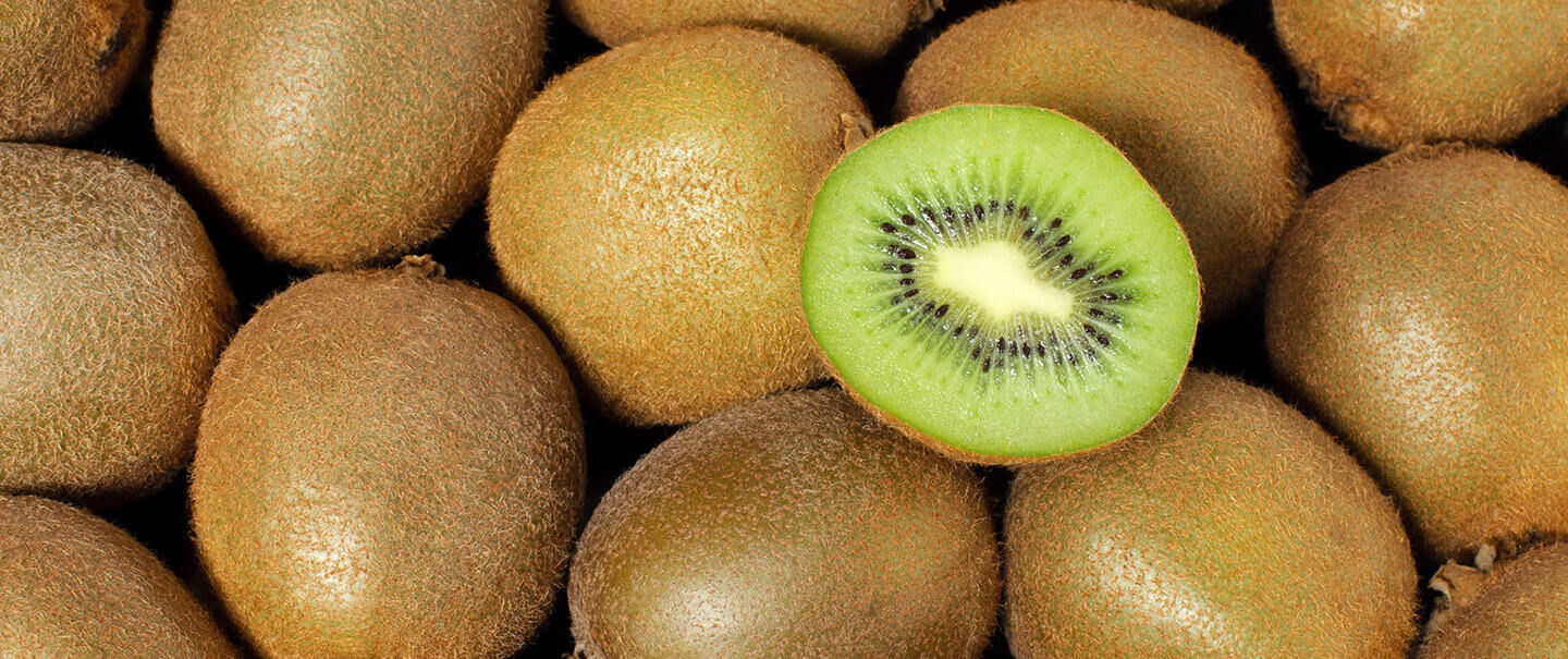 can-dogs-eat-kiwi